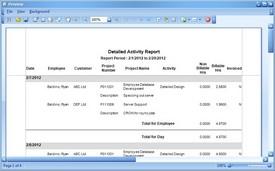 Detailed Activity Report Screenshot